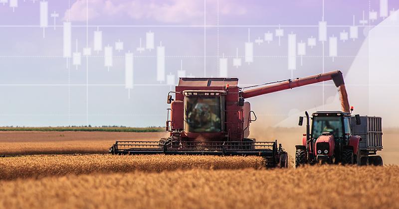 Taller de Ajuste por Inflación enfocado a la Actividad Agropecuaria